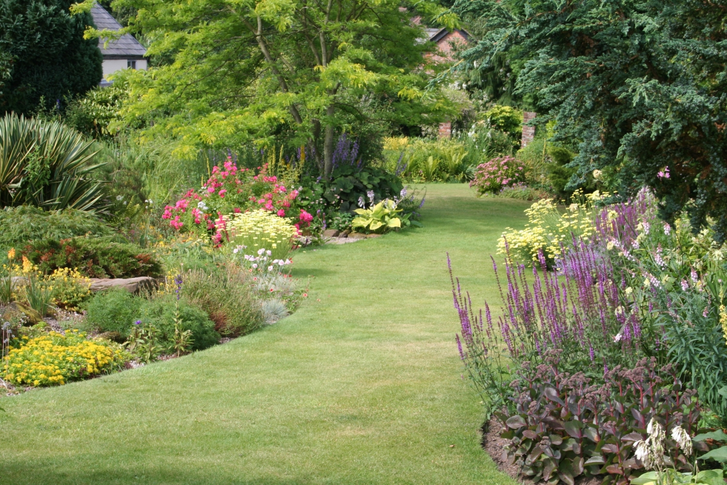 Beautiful lawn and borders