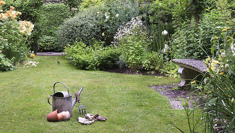 Follow our top tips for Spring gardening online