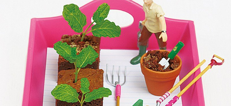 Macmillan Cancer Support's mint-choc brownies