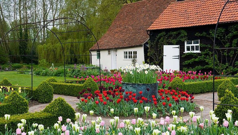 Designing a garden with 10,000 tulips