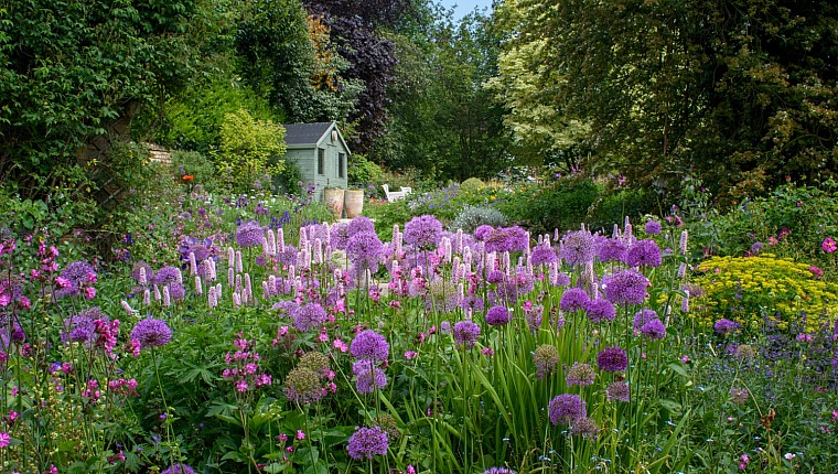 Gardens for wellbeing