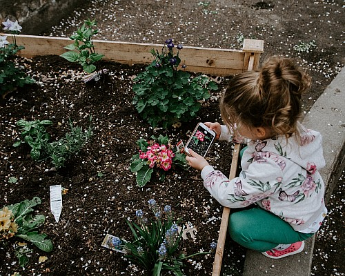 Family Gardens – Great days out with children