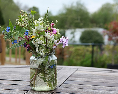 A Path to Health – Gardens and Health Week 2019