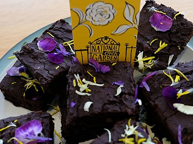 Horatio's Garden's vegan brownies