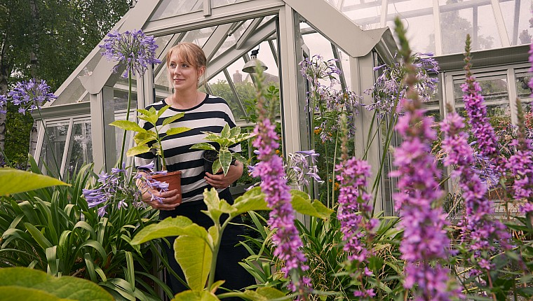 Better than medicine – how gardens help your emotional and physical wellbeing grow
