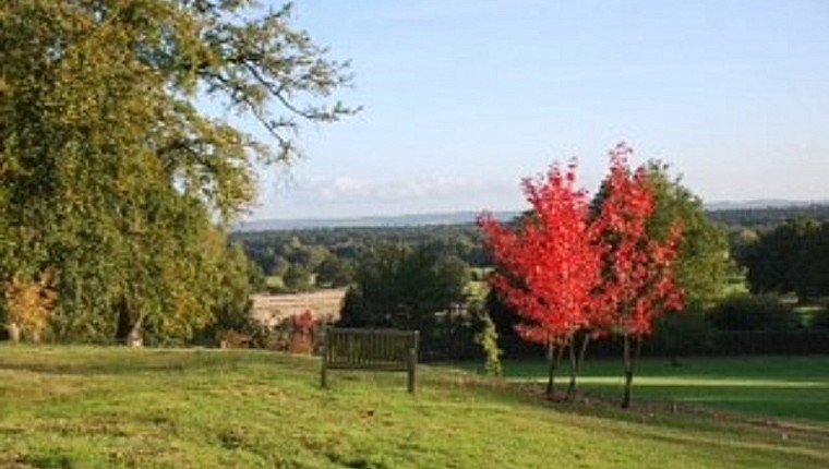 Join the festivities at Timber Hill, Surrey, this Autumn