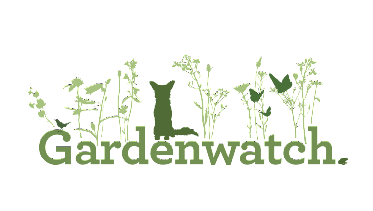 Get involved with Gardenwatch and help map our wildlife