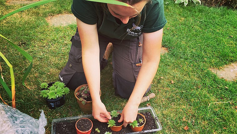 Eleanor Owens – why the National Garden Scheme is so important