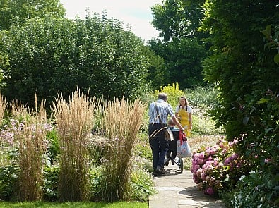 The top five health benefits of gardens, chosen by National Garden Scheme garden owners