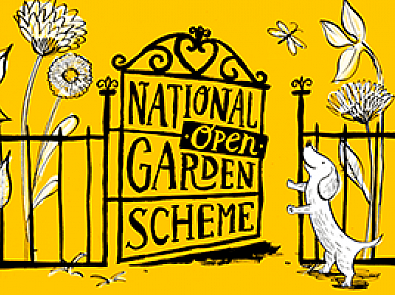 The National Garden Scheme launches a new brand as it looks to extend the charity's unique offering to a wider audience.