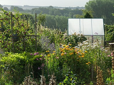 #NationalGardeningWeek – Be inspired at our allotment and kitchen gardens