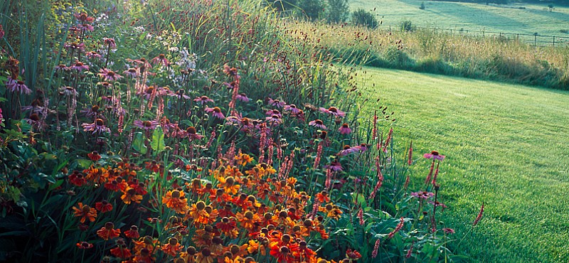 'Season of mists and mellow fruitfulness'